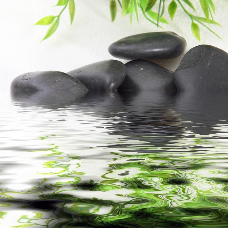 Massage Wesley Chapel Florida - Sports Massage Therapist Wesley Chapel